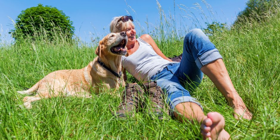 """Grounding or Earthing: An alternative treatment for your pet that is definitely NOT """"Out of This World!"""""""